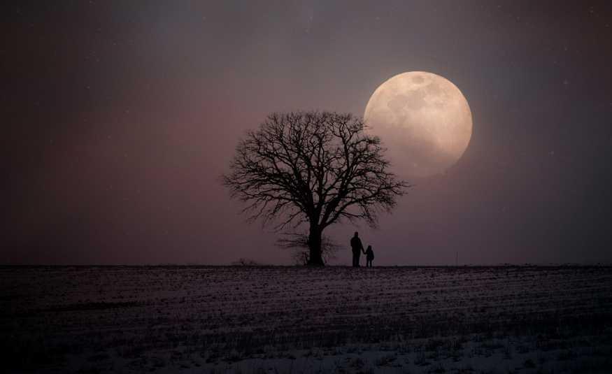 قريبا.. ستسافرون إلى القمر